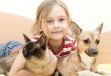 Kind mit Katze und Hund im Arm